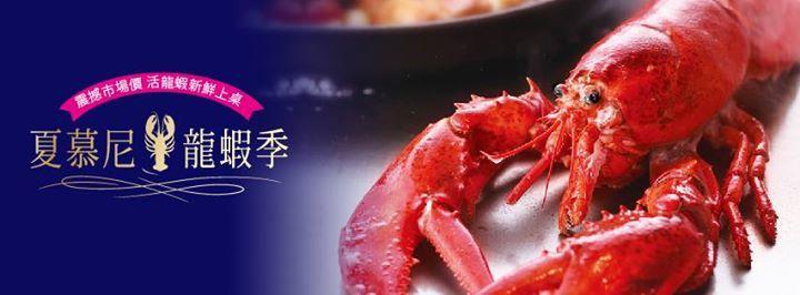 夏慕尼 龍蝦季,震撼市場價  活龍蝦新鮮上桌