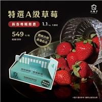 大苑子限時限量大大滿足的『草莓箱』開賣嚕,新春優惠價549元